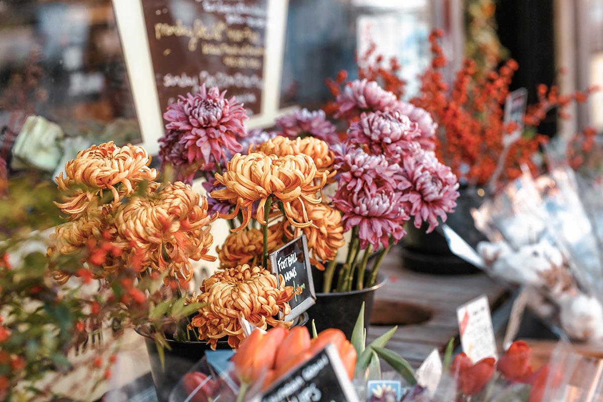 EM-spring-flowers