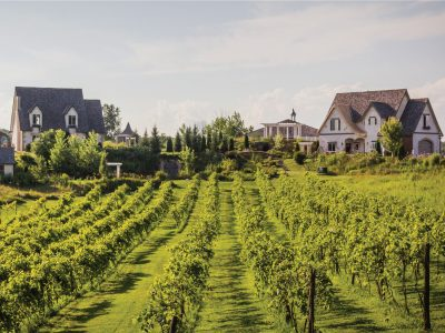 EM_menomonie_Cottage_Wine_Vineyard